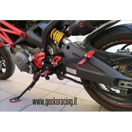 Ricambi accessori Pedane Ducati Monster 696 795 796 1100